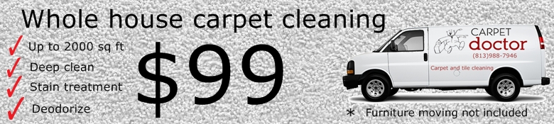 Carpet Cleaning apollo beach